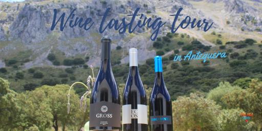 Malaga wine tasting tour in Antequera