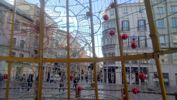 through the Christmas tree on Plaza de la Constitucion