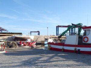 Malaga fishing port