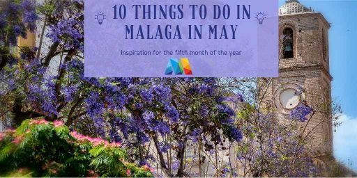 jacaranda trees in bloom, 1 of the things to do in Malaga in May