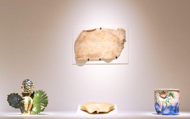Metamorphosis Barcelo exhibition in Malaga