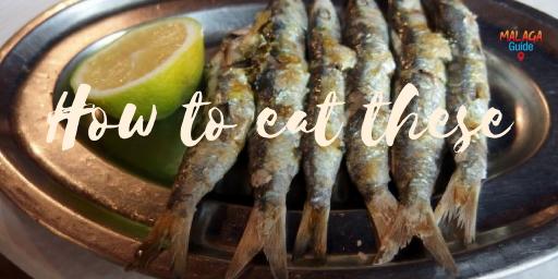 eating fish in Malaga