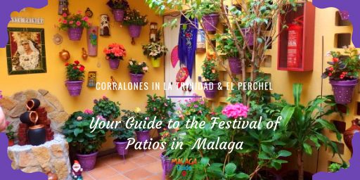 An example of one of the entrants in Malaga patio festival