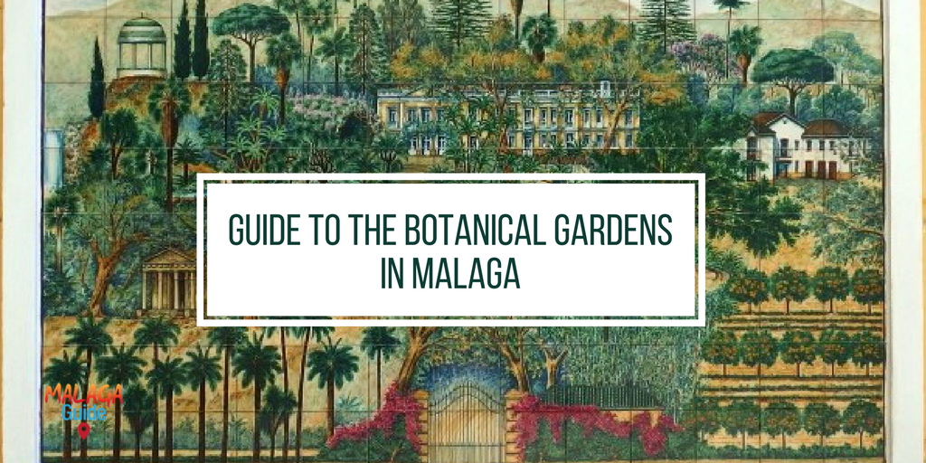 Botanical Gardens in Malaga | GuideToMalaga.com on map of marsala, map of penedes, map of italica, map of costa de la luz, map of graysville, map of tampere, map of venice marco polo, map of mount ephraim, map of mutare, map of puerto rico gran canaria, map of macapa, map of sagunto, map of soria, map of getxo, map of iruna, map of cudillero, map of isla margarita, map of andalucia, map of bizkaia, map of monchengladbach,